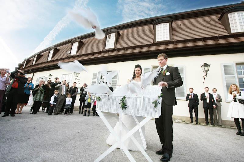Hochzeitsfotograf Schloss Solitude Tauben