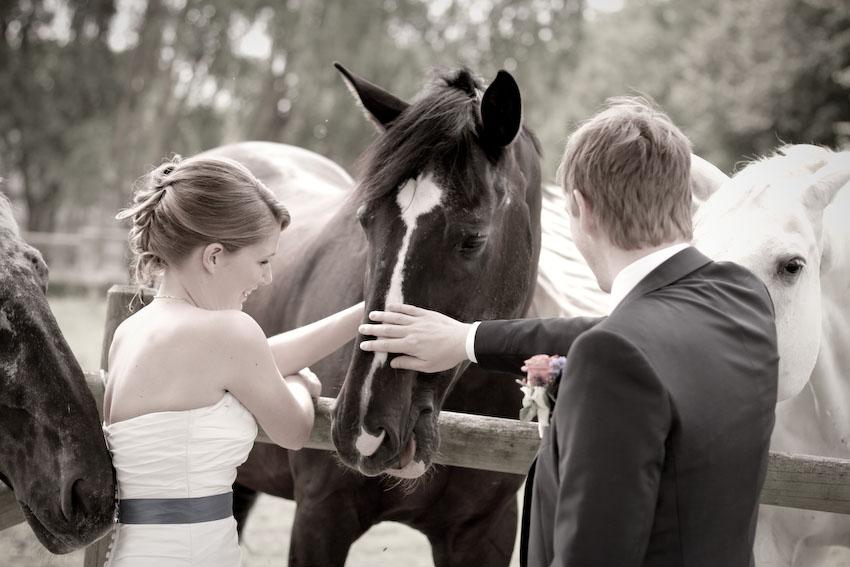 Heiraten auf dem Sonnenhof