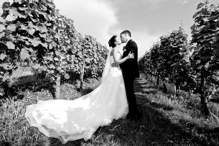 Hochzeit Weingut Steinbachhof -0053