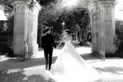Schloss Montfort Hochzeit